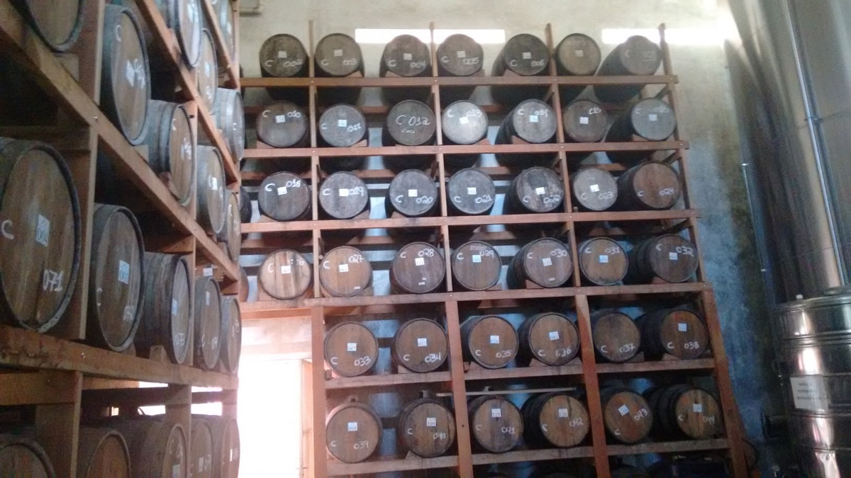 Visita do Sesi e Sindibebidas a Cachaça Porto Morretes